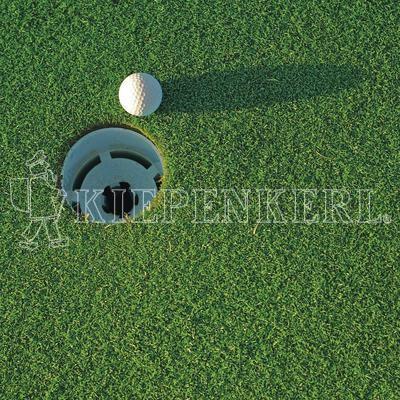 Kiepenkerl RSM 4.1.3 Golfrasen Grün 5kg Rasensamen