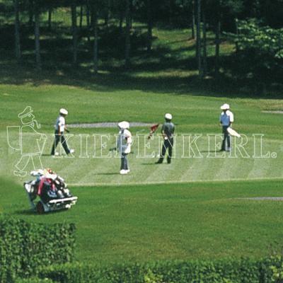 Kiepenkerl RSM 4.4.1 Golfrasen Spielbahn 10kg Rasensamen