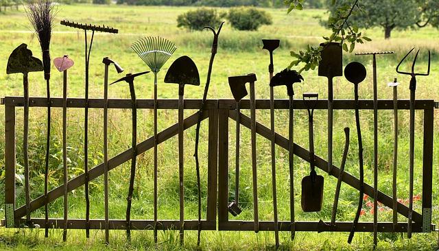 Wie Sie In 6 Schritten Ihre Rasenreparatur Durchfuhren Rasensamen