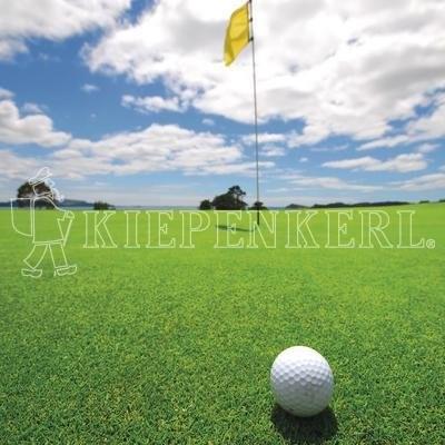 Kiepenkerl RSM 4.1.1 Golfrasen Grün 10kg Rasensamen