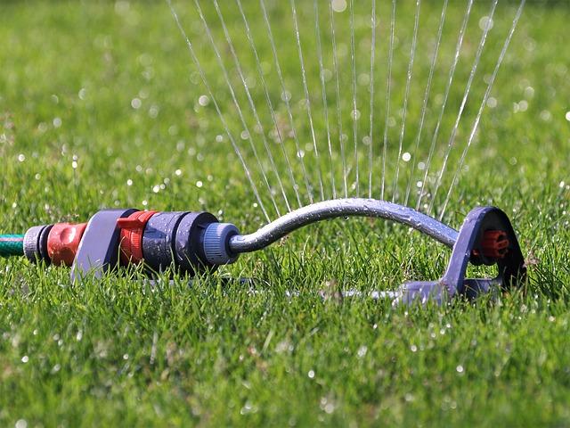 Wie Sie Ihren Rasen Im Sommer Richtig Beregnen Und Für Ausreichend