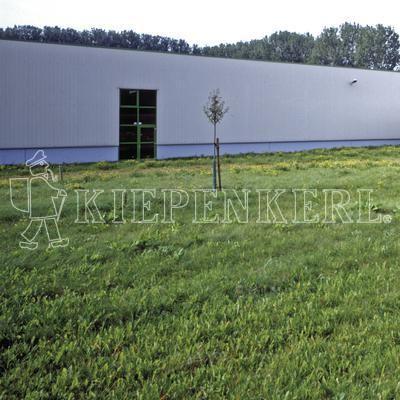 Kiepenkerl RSM 7.1.2 Landschaftsrasen Standard mit Kräutern 10 kg Rasensamen