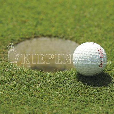 Kiepenkerl DSV RSM 4.1.2 Golfrasen Grün 5kg Rasensamen