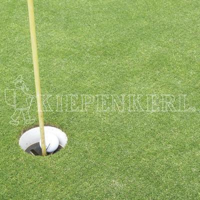 Kiepenkerl Golfrasen Masters Fairway 445 10kg Rasensamen